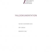 thumbnail of Falldokumentation_Bsp Bau 2015