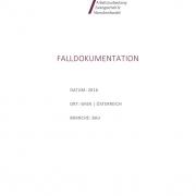 thumbnail of Falldokumentation_Bsp Bau_Österreich 2016