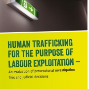 thumbnail of FES Human trafficking for the purpose of labour exploitation – An evaluation of prosecutorial investigation files and judicial decisions (2015)