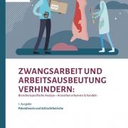 thumbnail of 2020_Servicestelle gegen Zwangsarbeit _Analyse Fleisch und Paketbranche